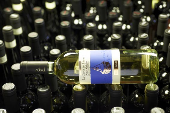 Pinot Grigio del veneto Fasoli Gino 2020